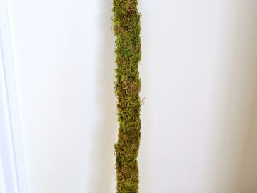 Selling: Moss Pole 3 ft