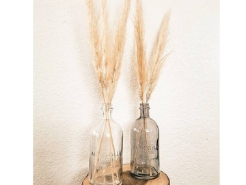 Selling: Petite Pampas in Magnolia Home Glass Bottle