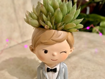 Selling: Cute pot head with succulent