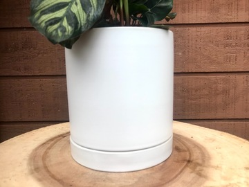Selling: Planter Pot White- Romey