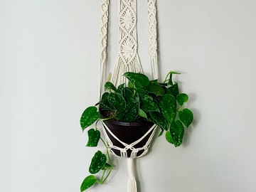 Selling: Intricate Macrame Plant Hanger