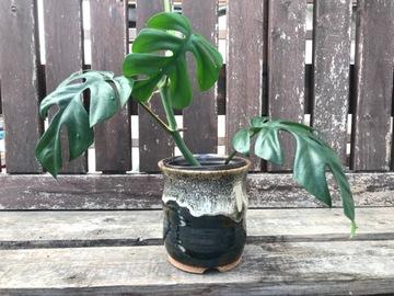 "Selling: 3"" Dual glazed pot with drainage hole"