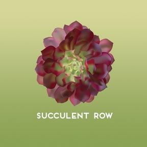 SucculentRow